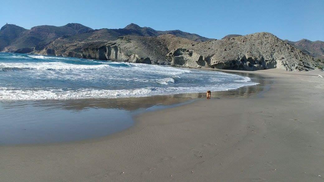 A deserted Monsul Beach in Southern Spain near Tarifa