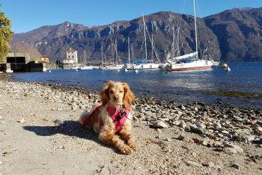 Annie enjoying some sun in Pescallo Bay