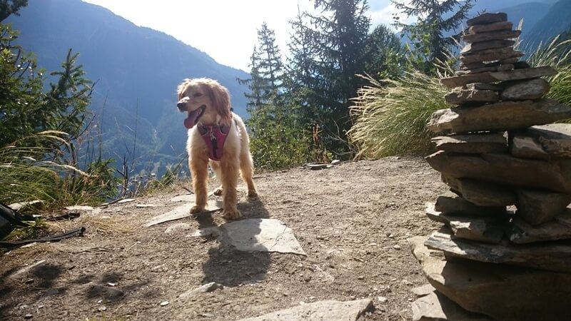 Annie taking a break on the hike up to Plan Checrouit