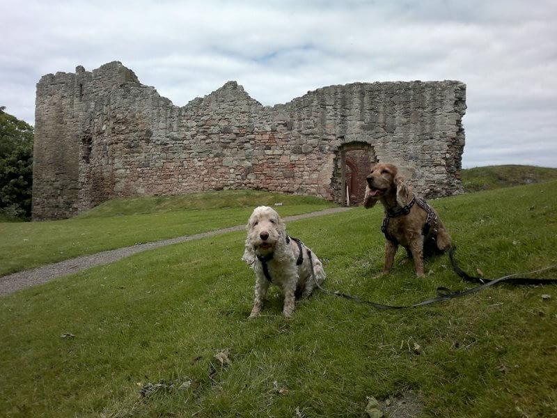 Hailes Castle near East Linton