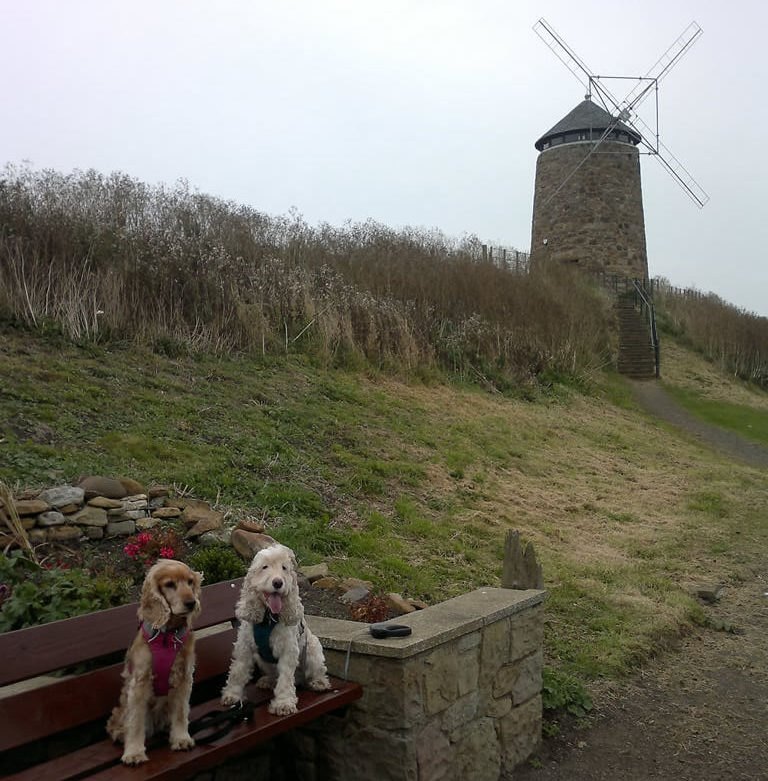 Salt Pans Windmill St Monans