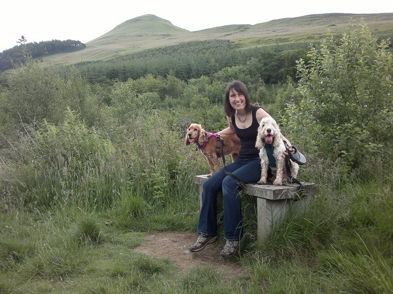 Mapsie Den Dog Walk views